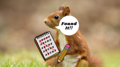 Red Squirrel Word Search