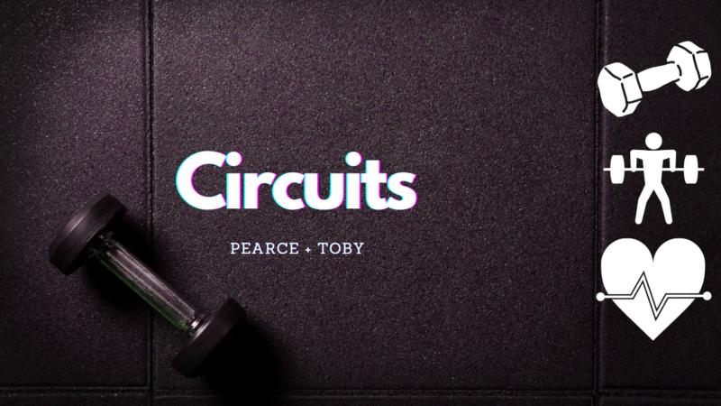 Circuits final